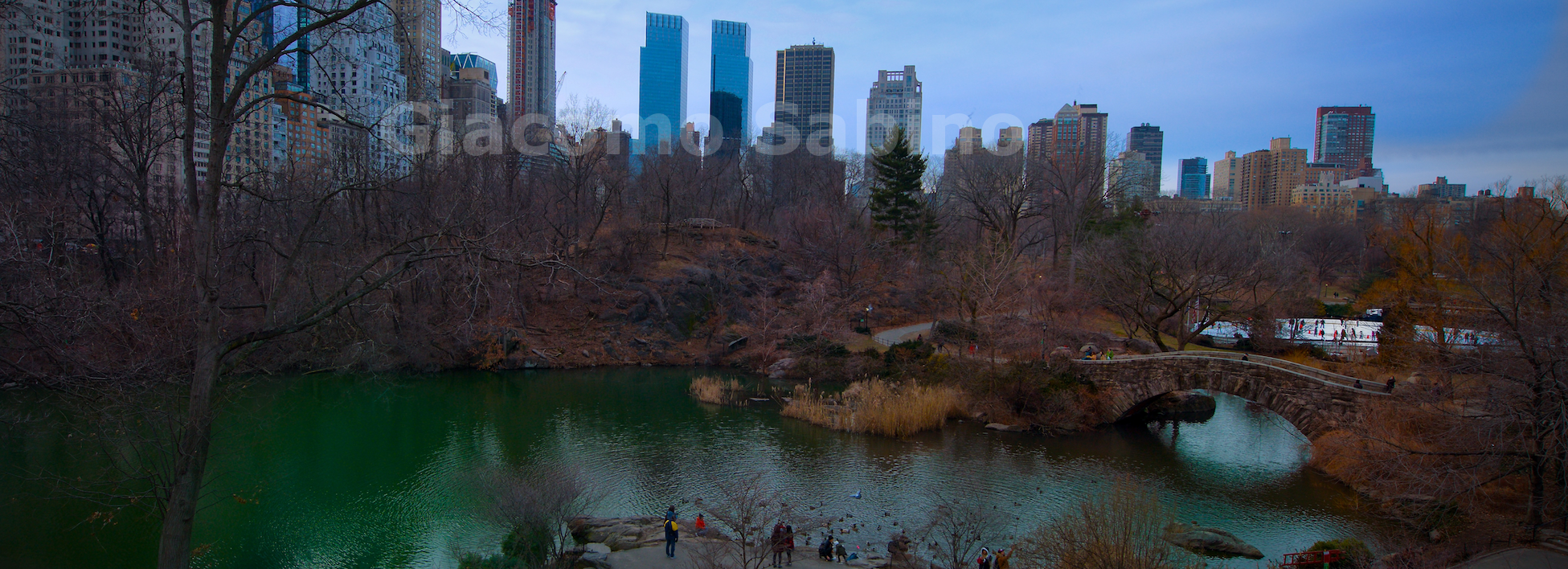 NYC Central Park-f